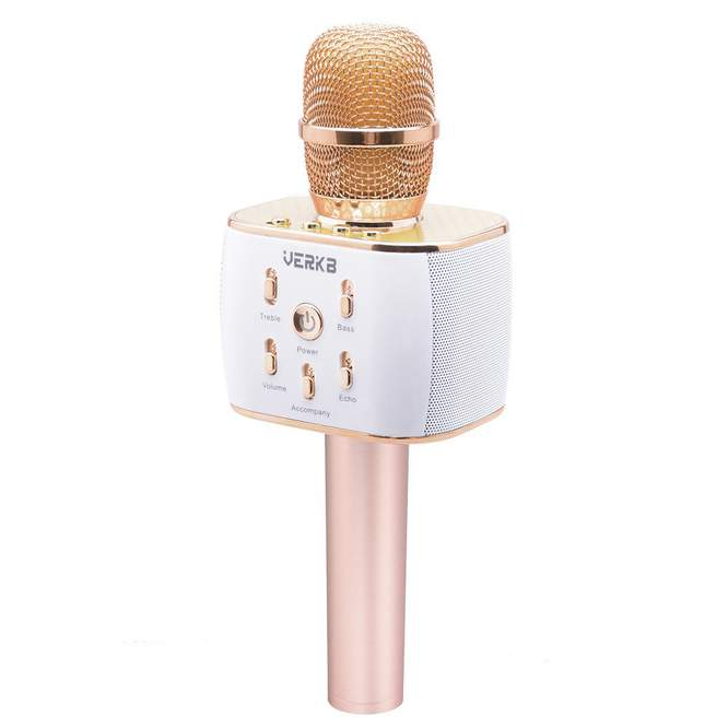 Bargain Price for Great Quality Microphone